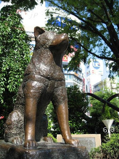 154775-hachiko-statue-shibuya-tokyo-famous-meeting-point-tokyo-japan