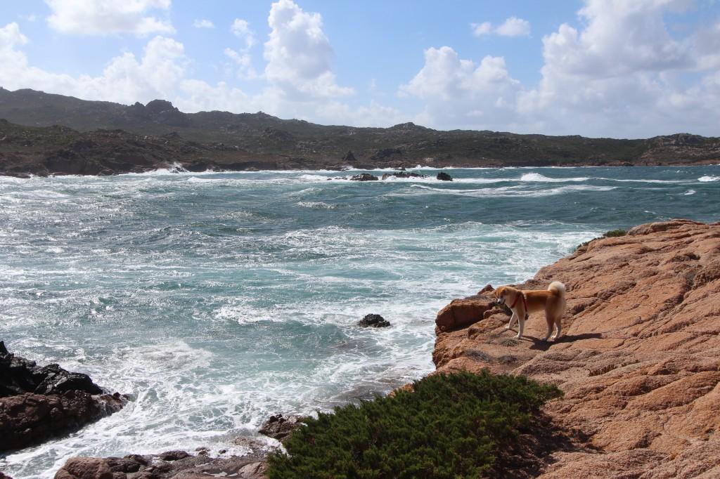 Vacances - Corse