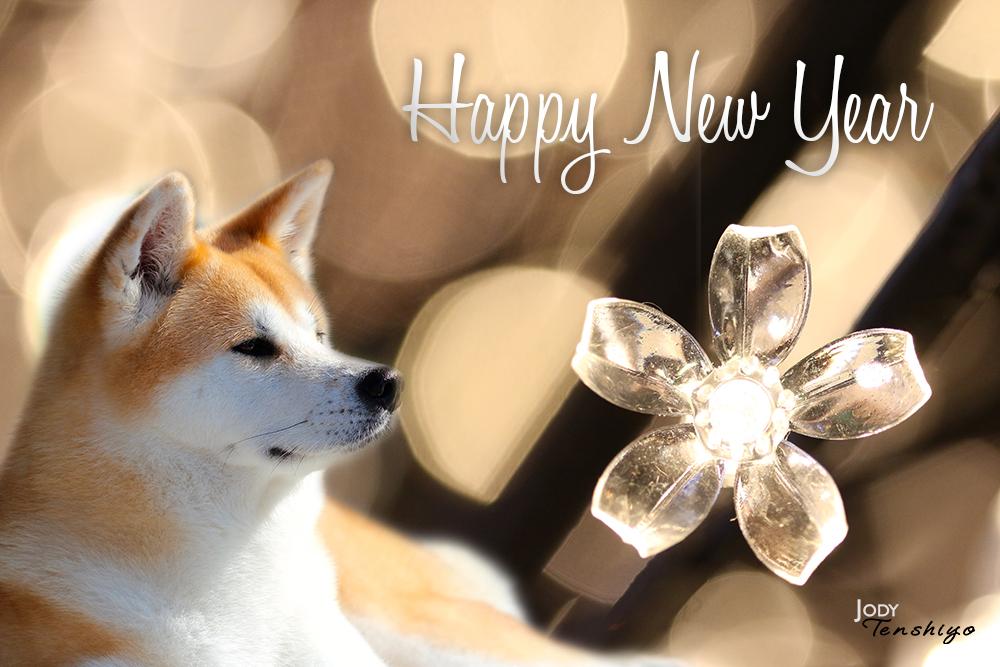 Hyappy new year