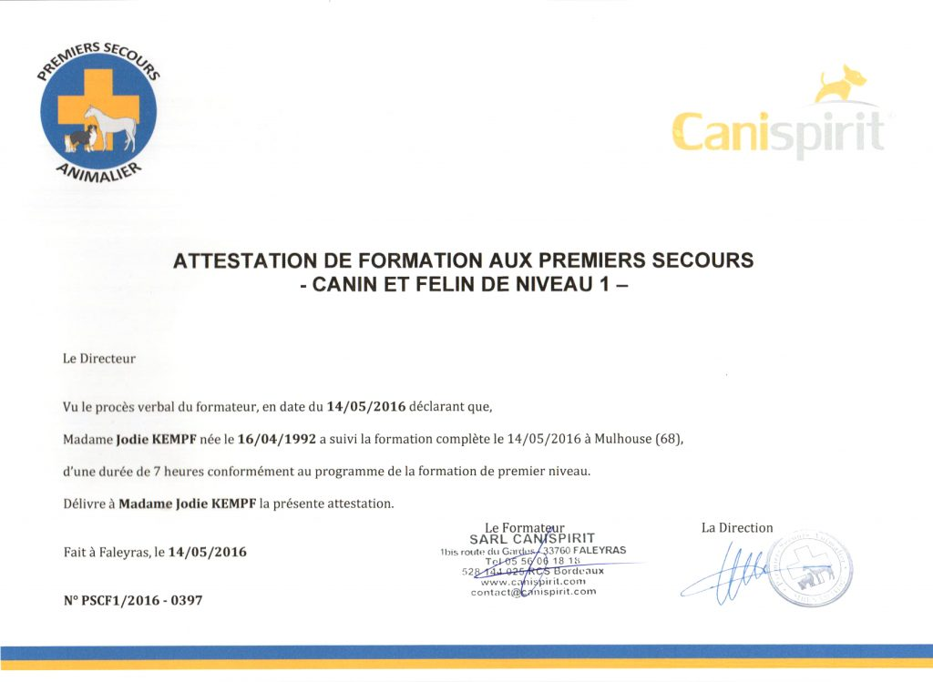 attestation-formation-premier-secours-canispirit