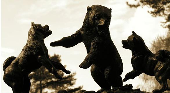 akita-inu-ours-hachiko-statut-chasse